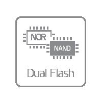 Dual Flash